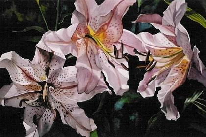 orchid-paintings