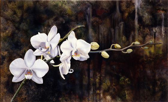 Beautiful Orchid Oil Paintings Fine Art Blogger