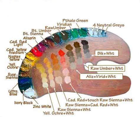 Artist Paint Colors Multitudes of Colors Are