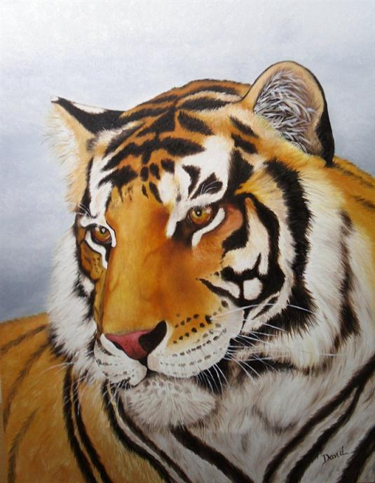 Realistic Tiger and Leopard Paintings - Fine Art Blogger