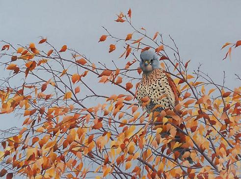 bird-on-tree