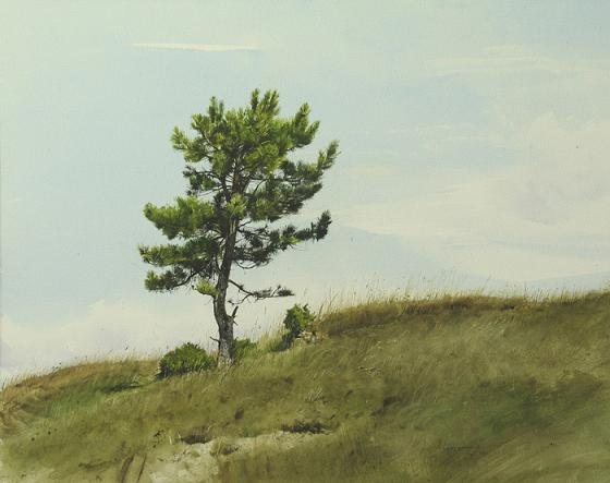 Watercolor paintings by bulgarian artist atanas matsoureff for How to paint a tree