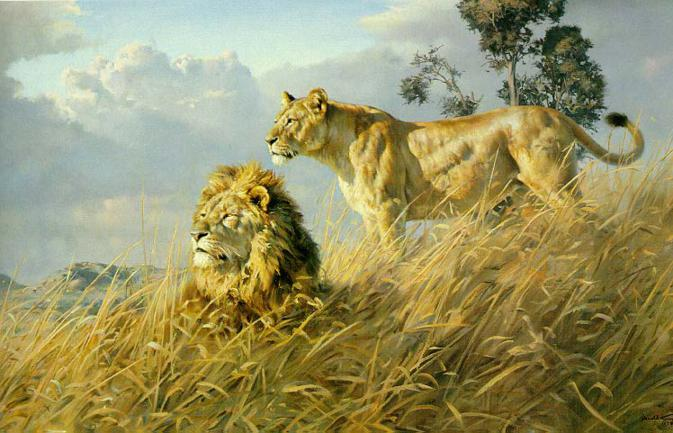 Donald Grant Wildlife Paintings
